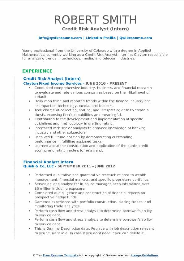 credit risk analyst cv example